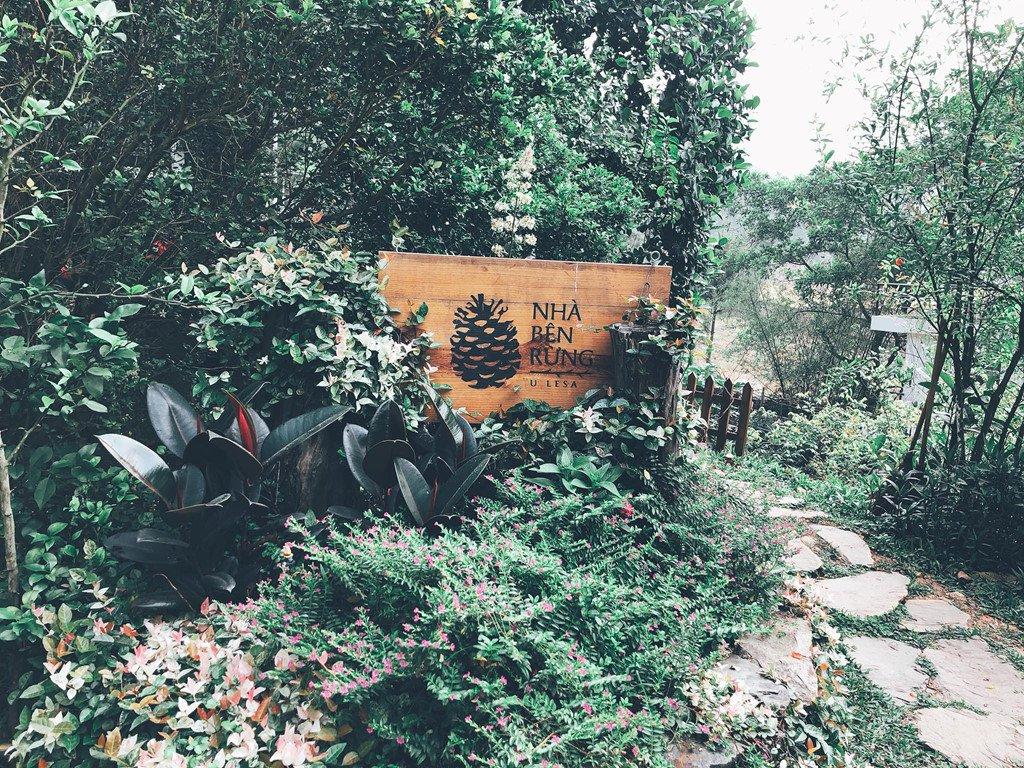 Nhà bên rừng