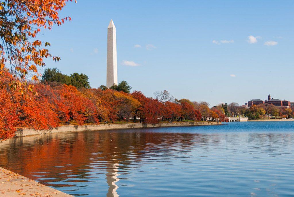 Kinh nghiệm du lịch Washington - ảnh 2