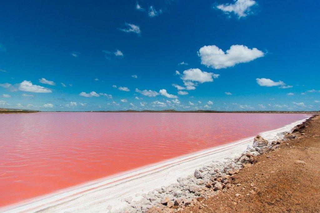 Khám phá hồ Hillier – bí ẩn hồ nước màu hồng đầy ảo diệu tại Australia - ảnh 4